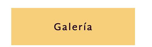 Galeria_titulo